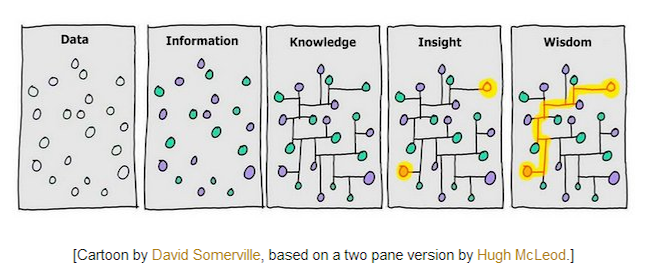 Discover how to turn data into wisdom through visualization.