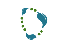 Spring Data Neo4j logo
