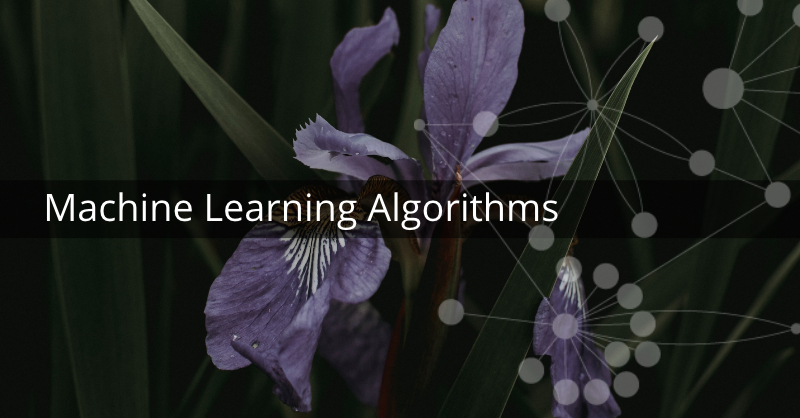Learn more about graphs and machine learning.